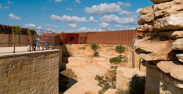 Bioparc zoo di doué-la-fontaine - un luogo per seminari atipico