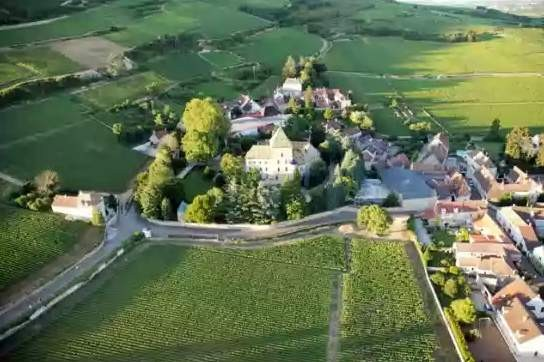 Chateau de santenay the field