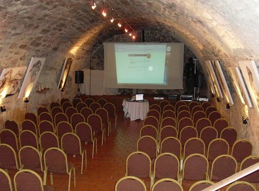 Chateau de mauriac - vaulted cellar