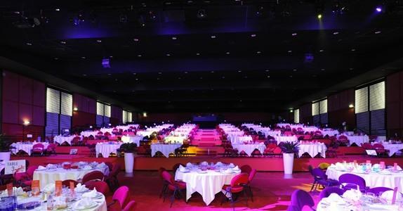 Kasino der großen motte - room enrico