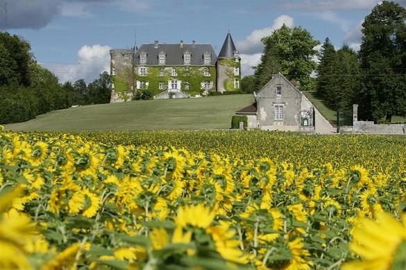 Chateau de la Cote - Umwelt