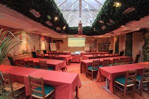 Les Fuchsias - Sala seminari