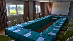 Salon Eagle - Quality Hotel du Golf Montpellier-Juvignac