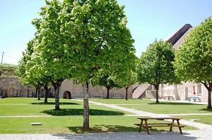 Fort Saint-André - Seminario verde