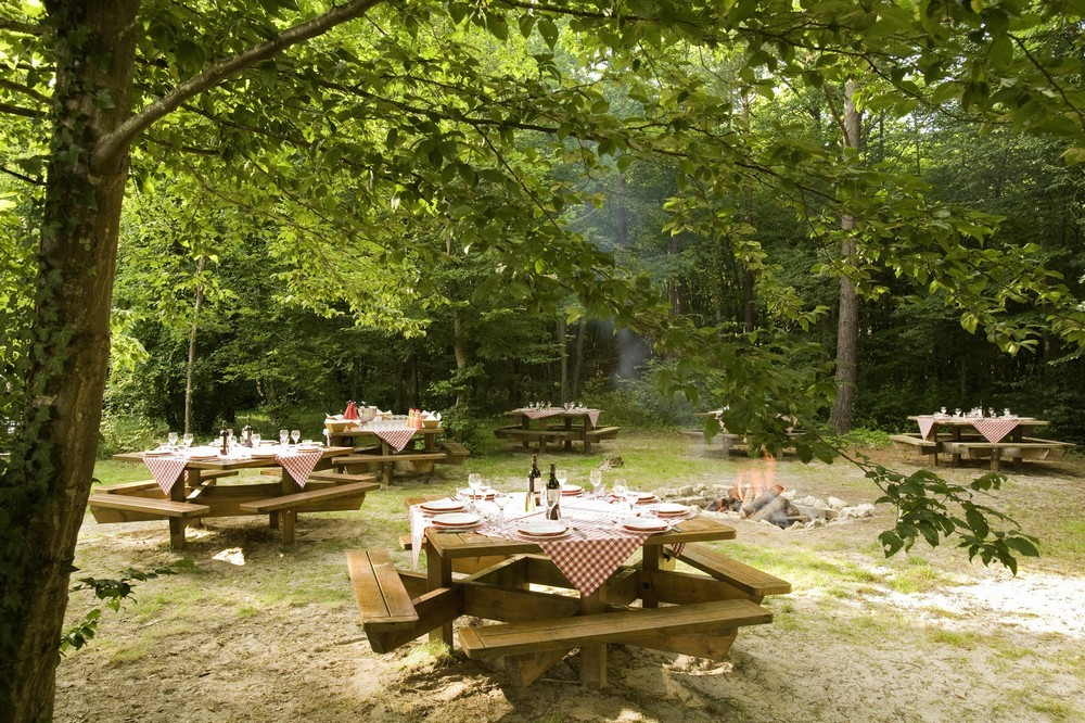Novotel fontainebleau ury - area barbecue