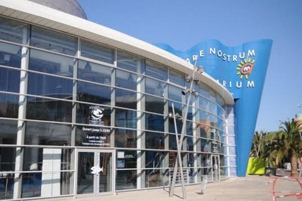 Anmietung von Räumen für die Organisation einer Konferenz oder einem Seminar in Carcassonne - Aquarium Mare Nostrum (34)
