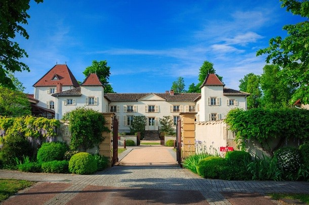 Chateaux for business seminars and conferences - Castle Broyers (71)