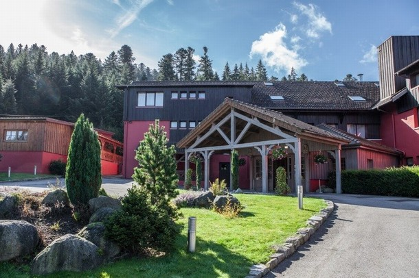 Rental of rooms for the organization of a conference or seminar in Gerardmer - Sophia Gardens (88)