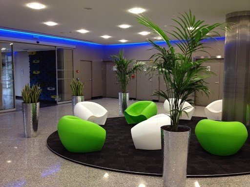 Atmosfera floreale - pianta verde