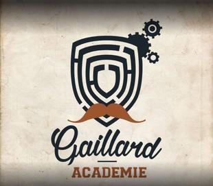Gaillard Académie - service provider in BRIVE-LA-GAILLARDE