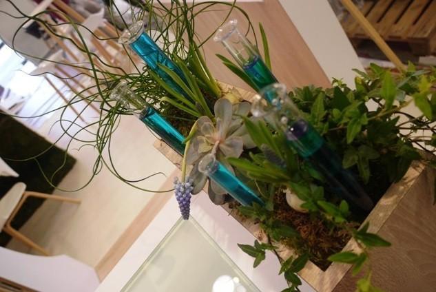 Lil 'floristerías - toulouse decoración floral