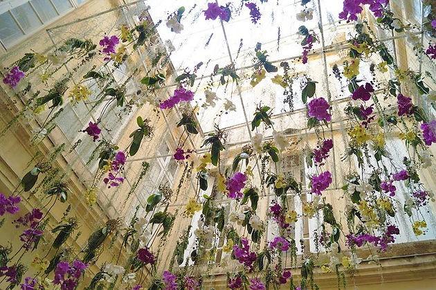 Diseño de flores por faustine - ambiente floral.