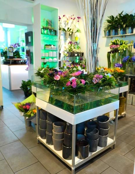 Green florist - ambiance