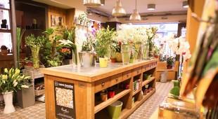 Bec et Fils - Rodez decorazione floreale