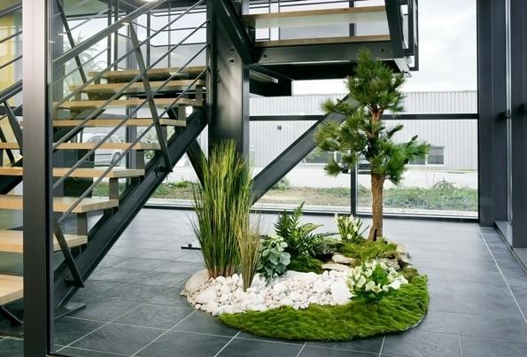 Planta de hogar - jardín interior