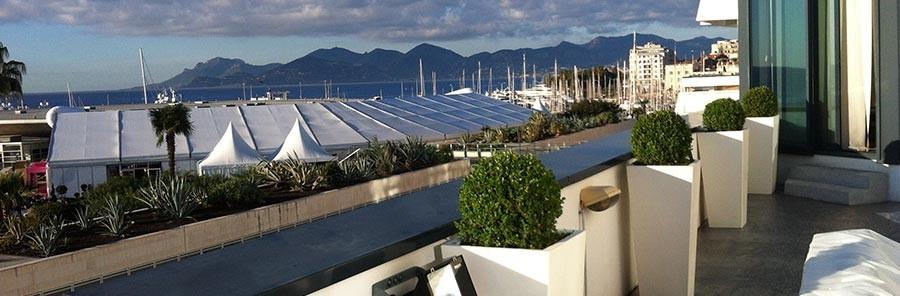 Riviera Pflanzen - Blumendekoration für Seminare