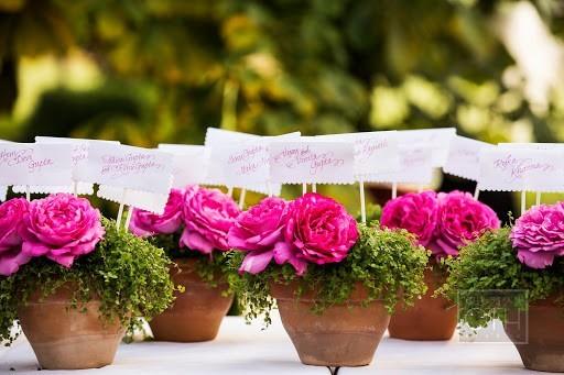 Madame artisan florist - seminar florist
