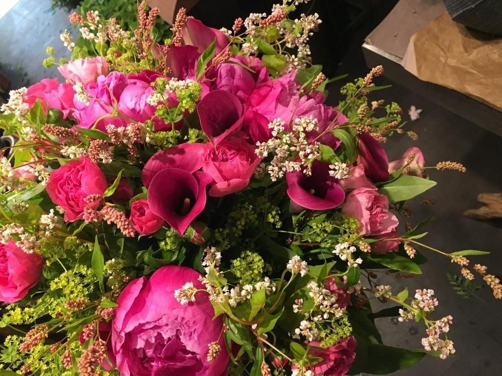 Gras und Rosenrosen