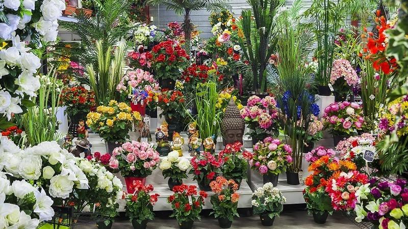 Flora deco - fiori