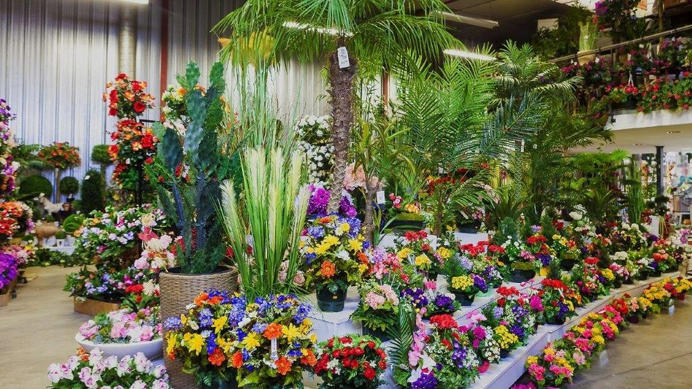 Flora déco - fiorista per eventi